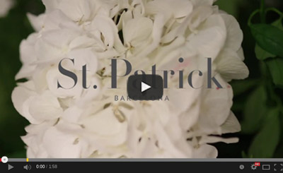 poza-video-sanpatrick-3